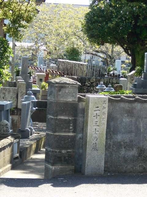 学芸員エッセイ 「高知県東部歴史探訪」⑦